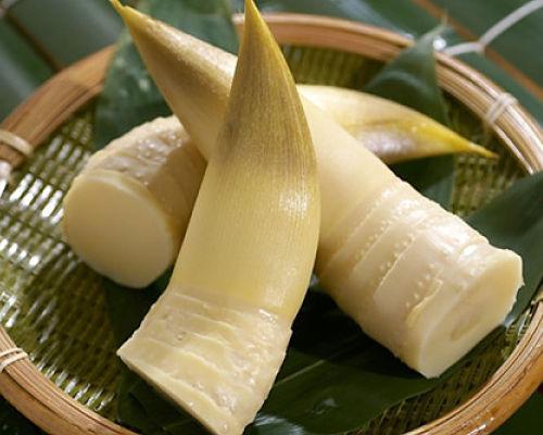 О полезных свойствах бамбука